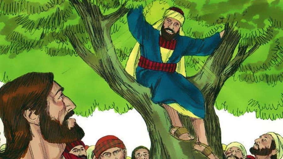 Story-of-Zacchaeus